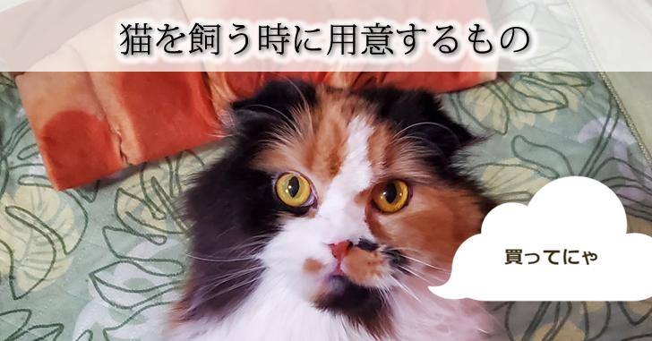猫を飼う時に用意