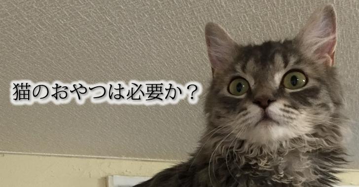 猫のおやつ